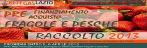 Prefinanziamento-Papavero-banner-largo-v1.0