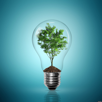 lampadina-albero
